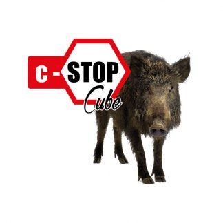 c-stop-cube-8276