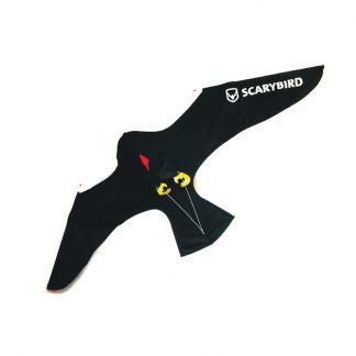 scarybird-6063